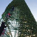 Каркасные уличные елки