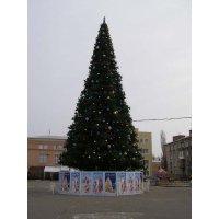 Елка уличная ствольная 15 м