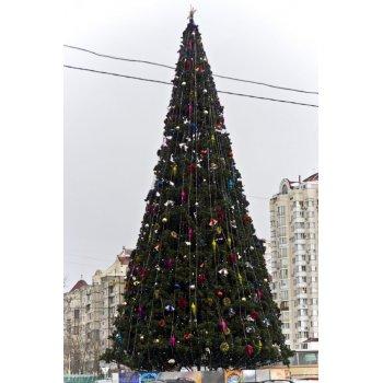 Ялинка стовбурова вулична 20 м
